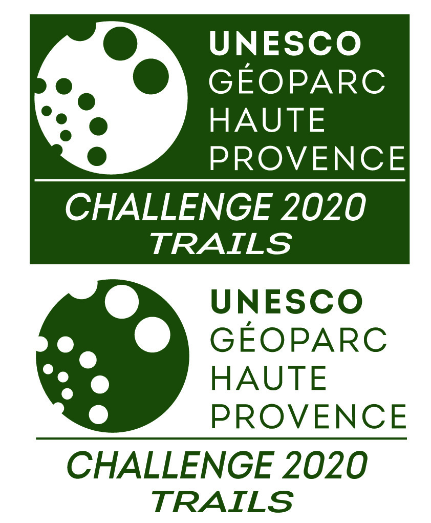 Logo Challenge-thumbnail