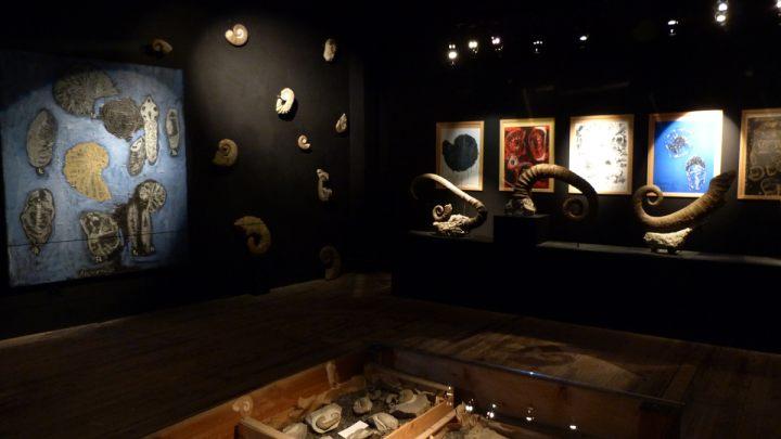 MP_Georges Autard_Exposition Imaginaire Géologique_fossiles 1