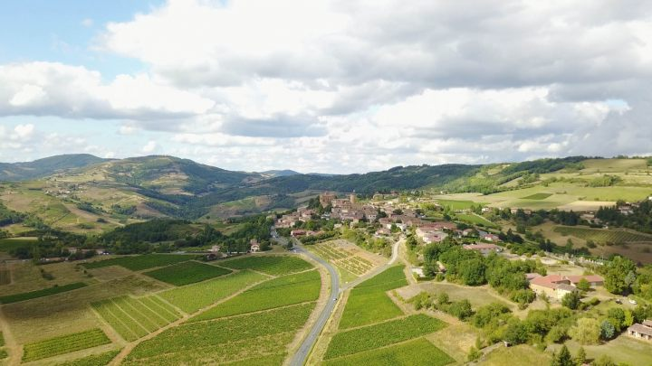 BEAUJOLAIS_village vignes