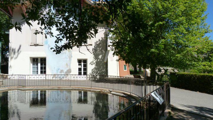 MP_Maison des Remparts_bassin truite